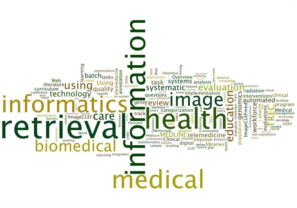 Health Informatics termpapers com